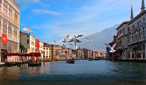 18.12.07, Venice, 169, o (1486) 3.tif